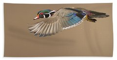 Probably The Most Beautiful Of All Duck Species Beach Towel by Mircea Costina Photography