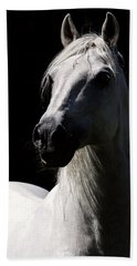Proud Stallion Beach Towel by Wes and Dotty Weber