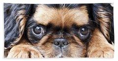Puppy Love Beach Sheet by Jeannette Hunt