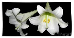 Pure White Easter Lilies Beach Towel by Rose Santuci-Sofranko