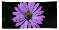 Purple African Daisy Beach Sheet