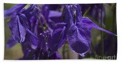 Purple Colimbine 1 Beach Towel