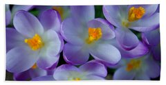 Purple Crocus Gems Beach Sheet by Tikvah's Hope
