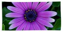 Purple Flower Beach Towel by Pamela Walton