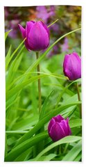 Purple Gems- Purple Tulips Rhode Island Tulips Purple Flower Beach Towel by Lourry Legarde
