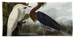 Purple Heron Beach Towel by John James Audubon