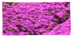 Purple Hills Beach Towel by Amy Gallagher