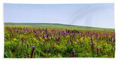 Purple Hills Beach Sheet