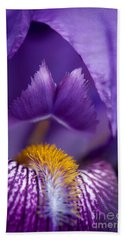 Purple Iris Macro Textured 1 Beach Towel