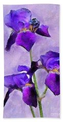 Purple Irises - Painted Beach Towel