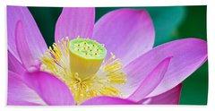 Purple Lotus Blossom Beach Sheet