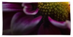 Purple Mum Macro Beach Towel