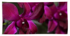 Purple Orchid Beach Sheet