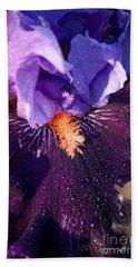 Purple Passion Beach Sheet