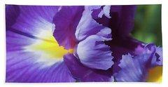 Purple Ruffles Beach Sheet