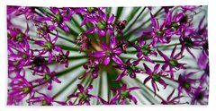 Beach Towel featuring the photograph Purple Starlight by Aimee L Maher Photography and Art Visit ALMGallerydotcom
