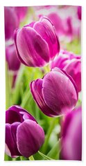 Purple Tulip Garden Beach Sheet
