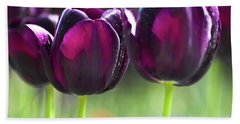 Purple Tulips Beach Towel by Heiko Koehrer-Wagner