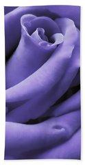 Purple Velvet Rose Flower Beach Towel by Jennie Marie Schell