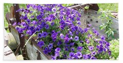 Purple Wave Petunias In Rusty Horse Drawn Spreader Beach Sheet