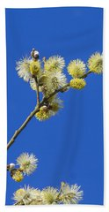 Pussy Willow Catkins Beach Towel