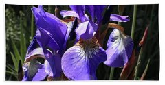 Quebec Provincial Flower Beach Towel