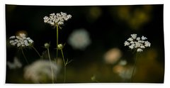 Queen Anne's Lace Beach Sheet