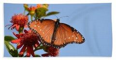 Beach Sheet featuring the photograph Queen Butterfly by Debra Martz