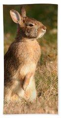 Rabbit Standing In The Sun Beach Towel