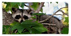 Raccoon Eyes Beach Towel