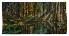 Rain Forest Sunbeams Beach Towel