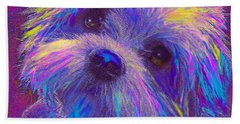 Rainbow Shih Tzu Beach Towel by Jane Schnetlage