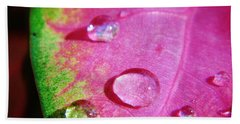 Raindrop On The Leaf Beach Sheet by D Hackett