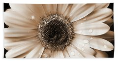 Raindrops On Gerber Daisy Sepia Beach Towel by Jennie Marie Schell