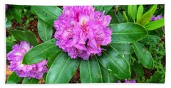 Rainy Rhodo Beach Towel