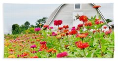 Raising Zinnia Flowers - Delaware Beach Towel