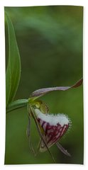 Ram's Head Lady-slipper Beach Towel