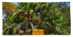 Rare Palm Tree Beach Towel by Debra Forand