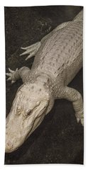 Rare White Alligator Beach Towel