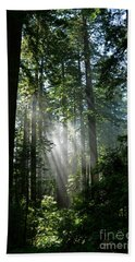 Rays In Redwoods Beach Towel