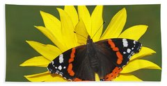 Red Admiral Butterfly Netherlands Beach Towel