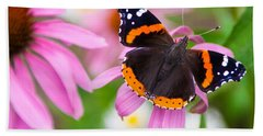 Red Admiral Butterfly Beach Towel by Patti Deters