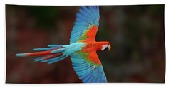 Red And Green Macaw Flying Beach Towel