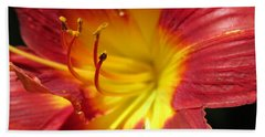 Red And Yellow Day Lily Beach Towel