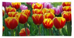 Beach Sheet featuring the photograph Red And Yellow Tulips  by Allen Beatty