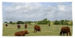 Beach Towel featuring the photograph Red Angus Cattle by Charles Beeler