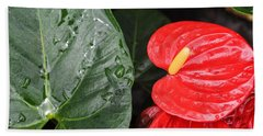 Red Anthurium Flower Beach Towel
