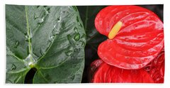 Red Anthurium Flower Beach Towel