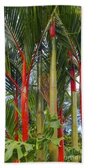 Red Bamboo Beach Towel