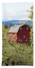 Beach Towel featuring the photograph Red Barn And Apple Blossoms by Patricia Babbitt